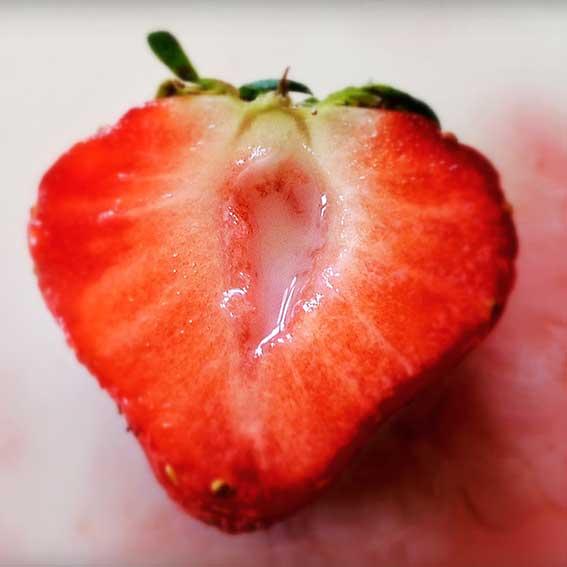 Fotocursus-online-fruit